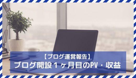 【ブログ運営報告】ブログ開設から1ヶ月経過したので報告など(1000PVと2円)