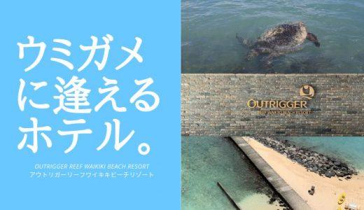 【写真100枚超!!】ハワイのアウトリガーリーフワイキキビーチリゾートに宿泊したらビーチでウミガメに逢えて興奮!激おすすめのホテルをレビュー!【部屋タイプ:オーシャンフロント】